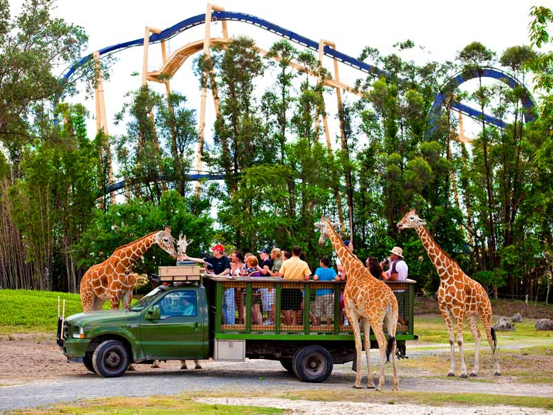 Busch Gardens Coupons 7 Hot Deals April 2017