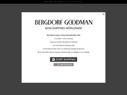 Bergdorf Goodman screenshot